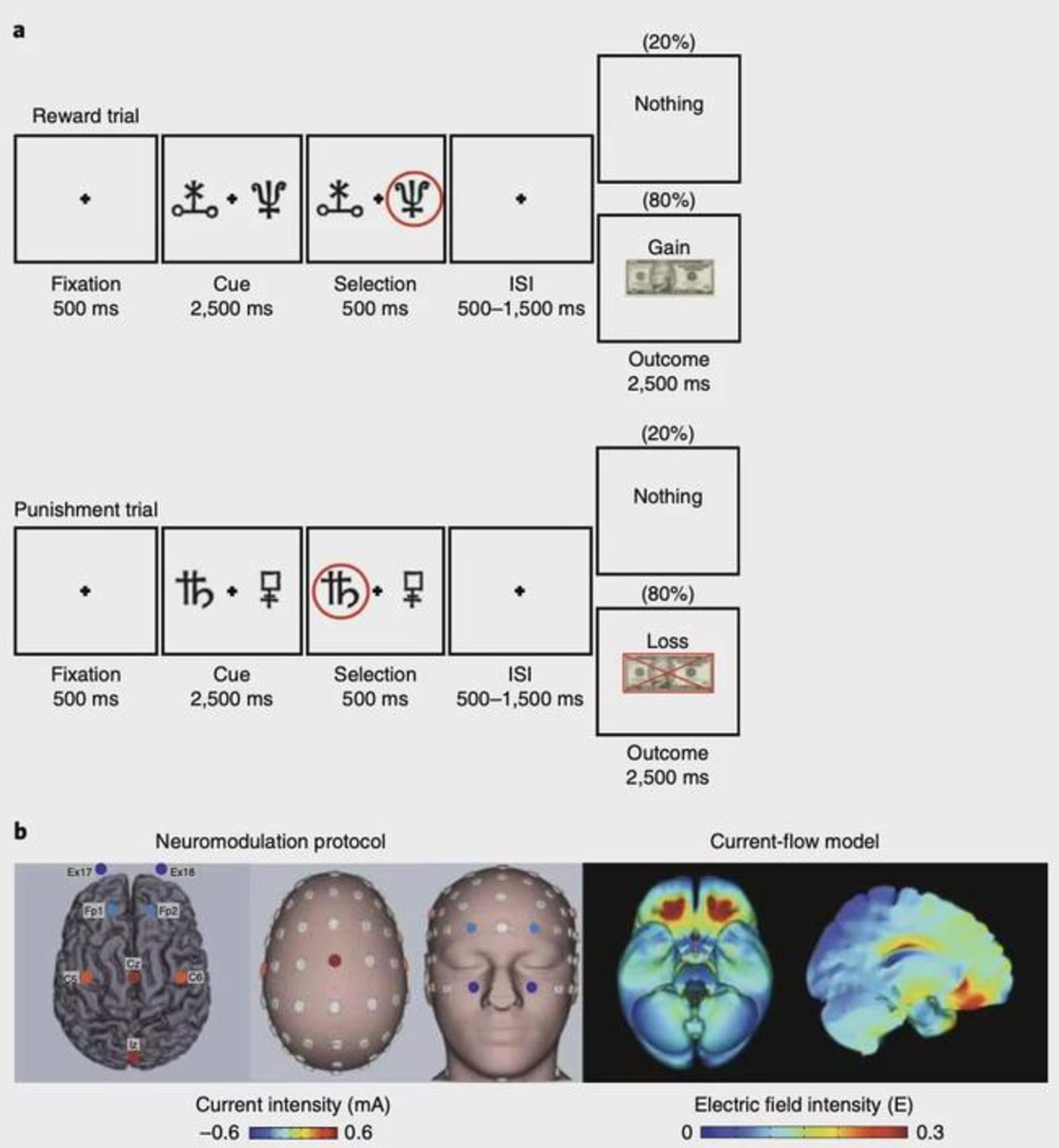 图|货币强化学习任务和大脑眶额神经调节协议示意图(来源:Nature Medicine)