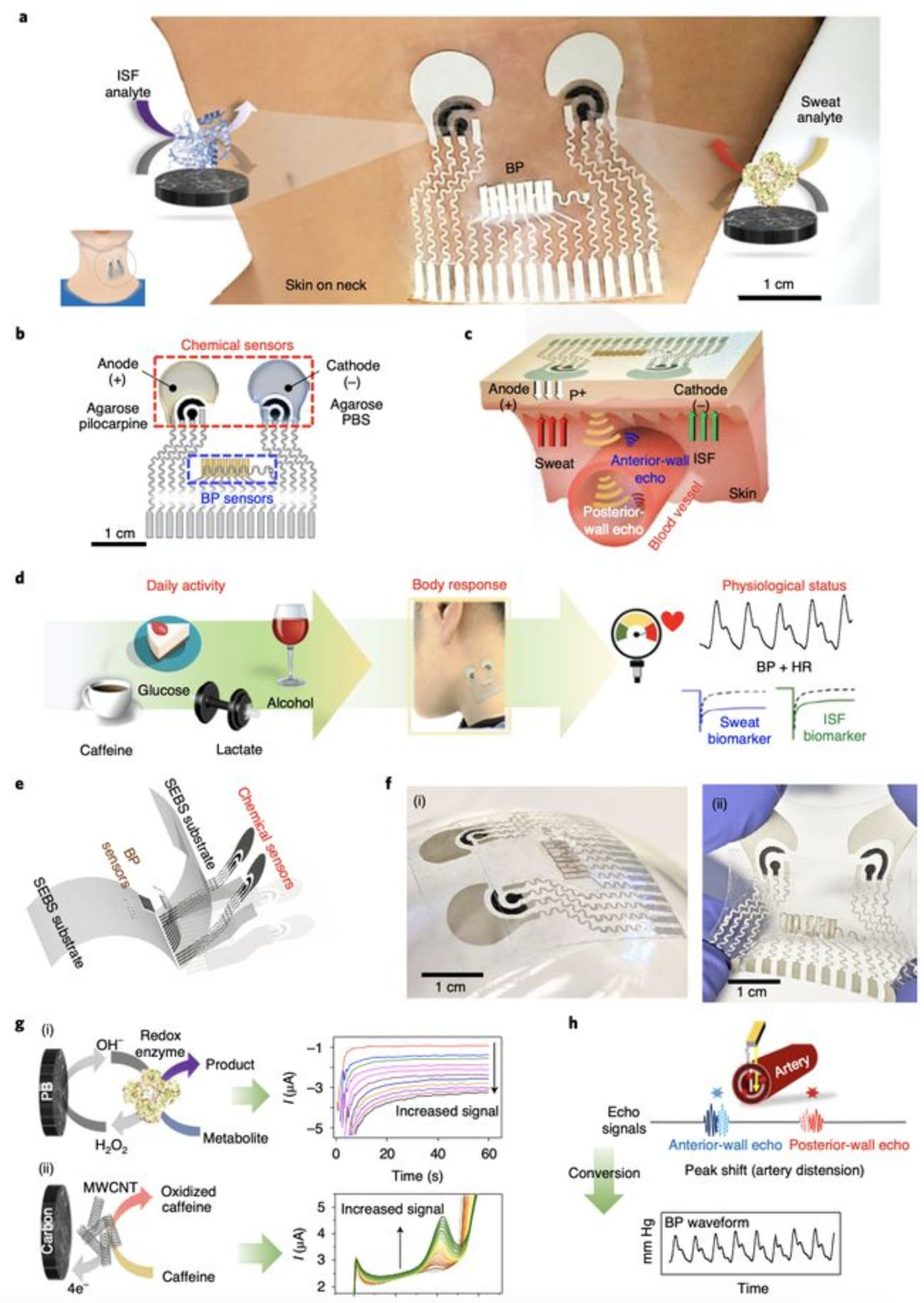 图|可拉伸集成BP-化学传感贴片的设计和机理(来源:Nature Biomedical Engineering)