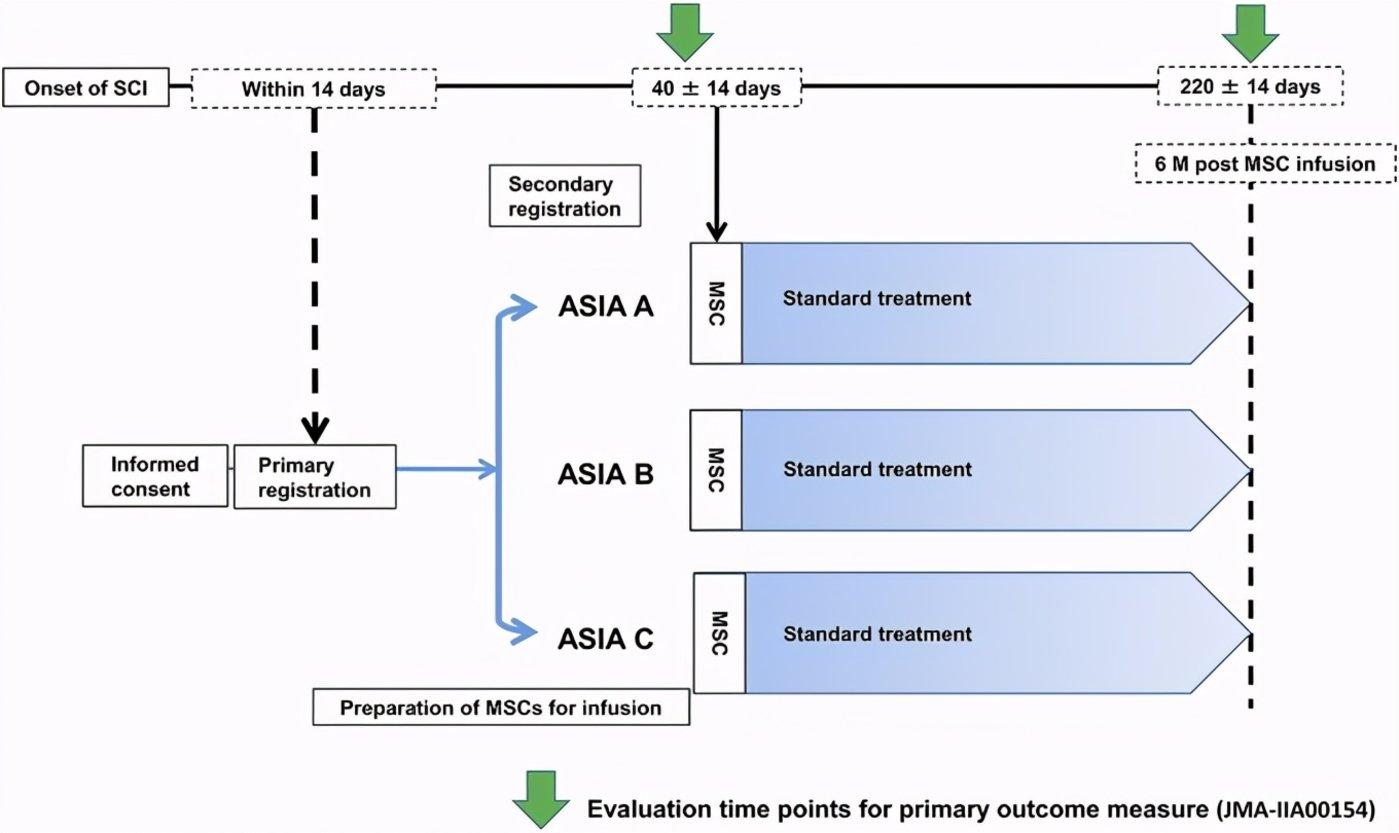 图|临床方案概况(来源:ScienceDirect)