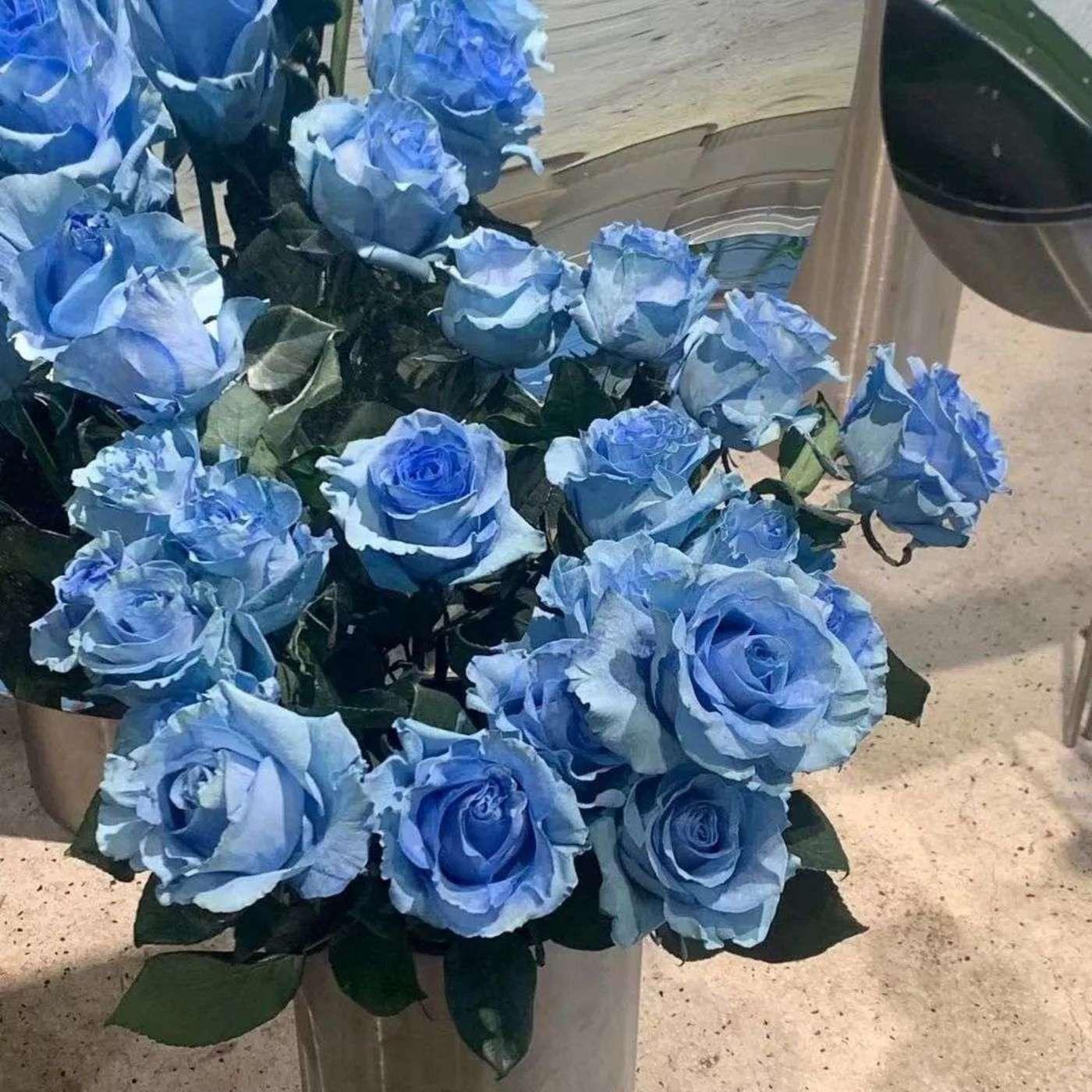 小杨在花店看到的进口染色蓝玫瑰,售价为99元/支
