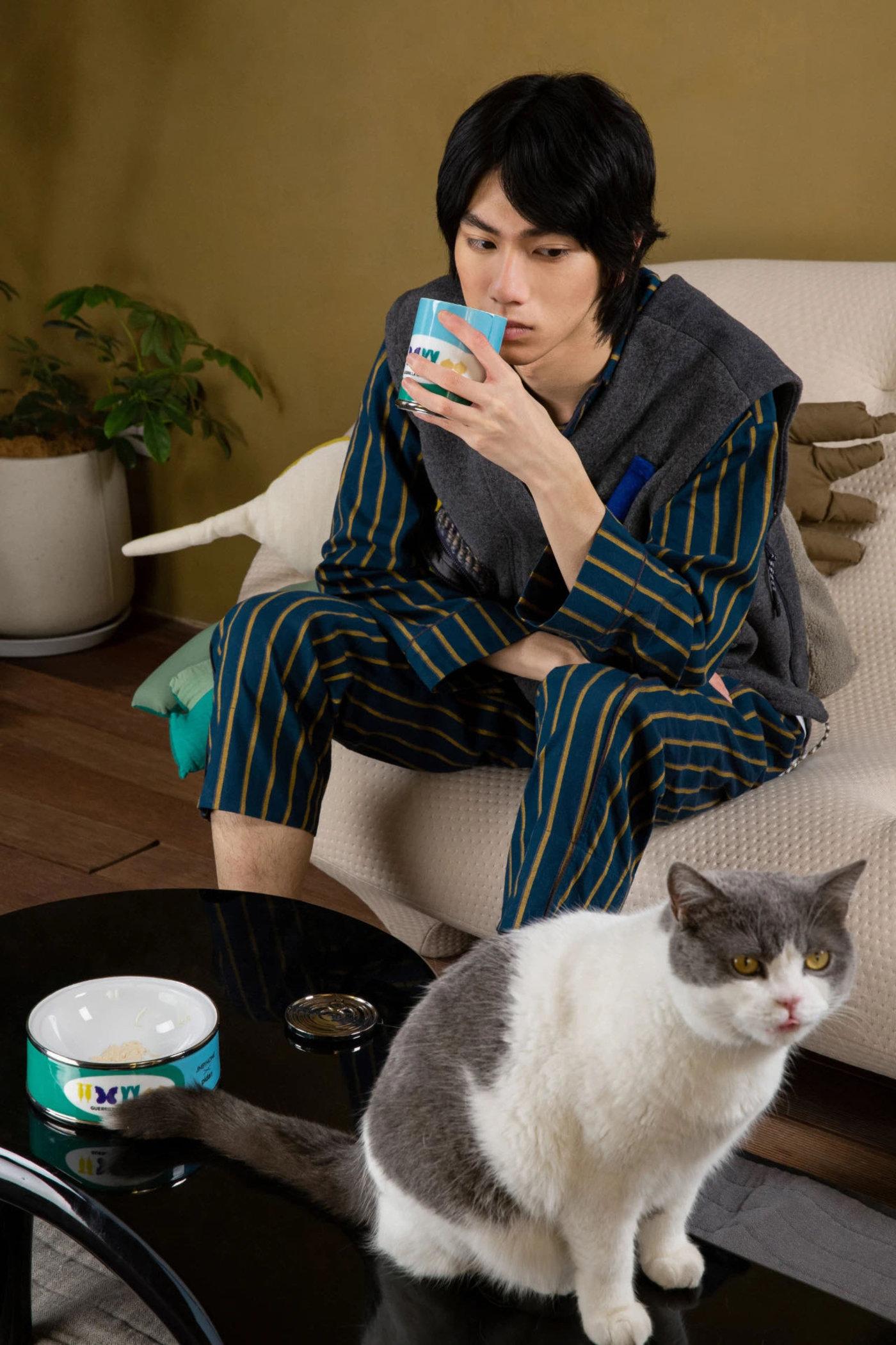 养宠的乐趣:用水杯揶揄一下小猫咪