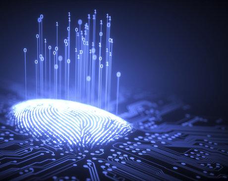這家指紋識別芯片龍頭,為何成了最慘的芯片股?