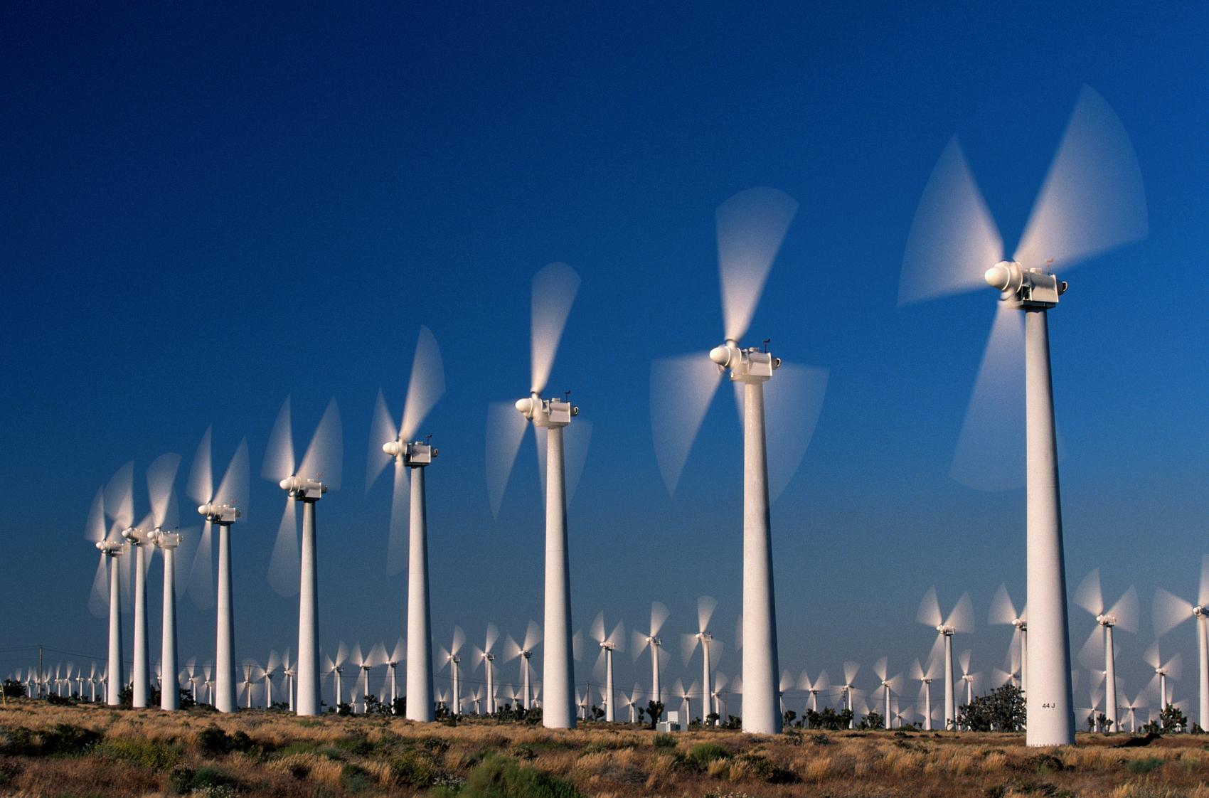 中国科技企业如何为碳中和做出贡献?