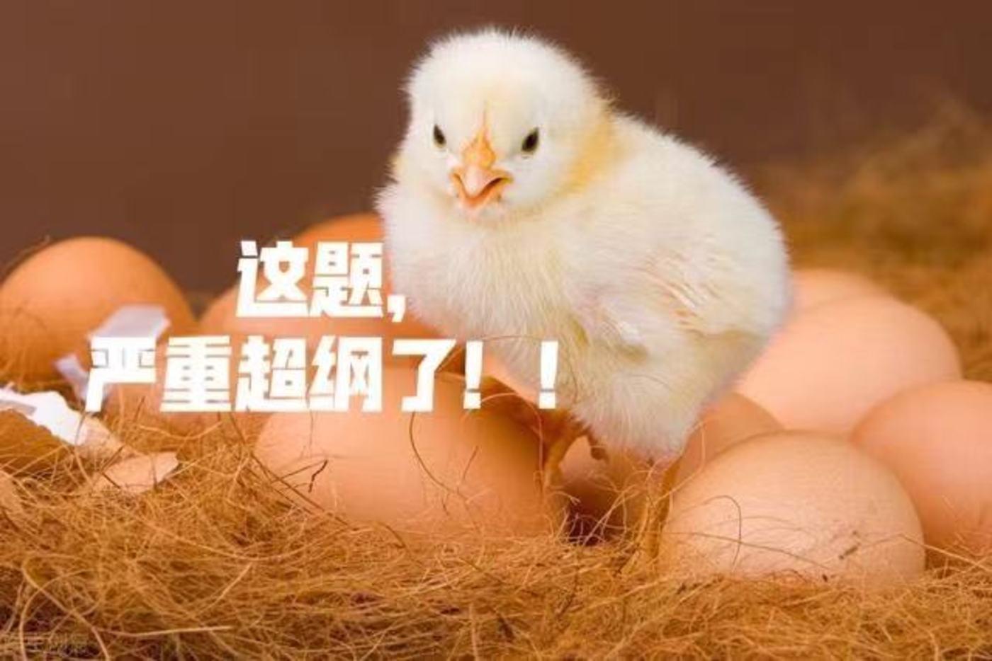 """""""熟蛋孵小鸡""""论文上热搜,刊发杂志停刊整顿"""
