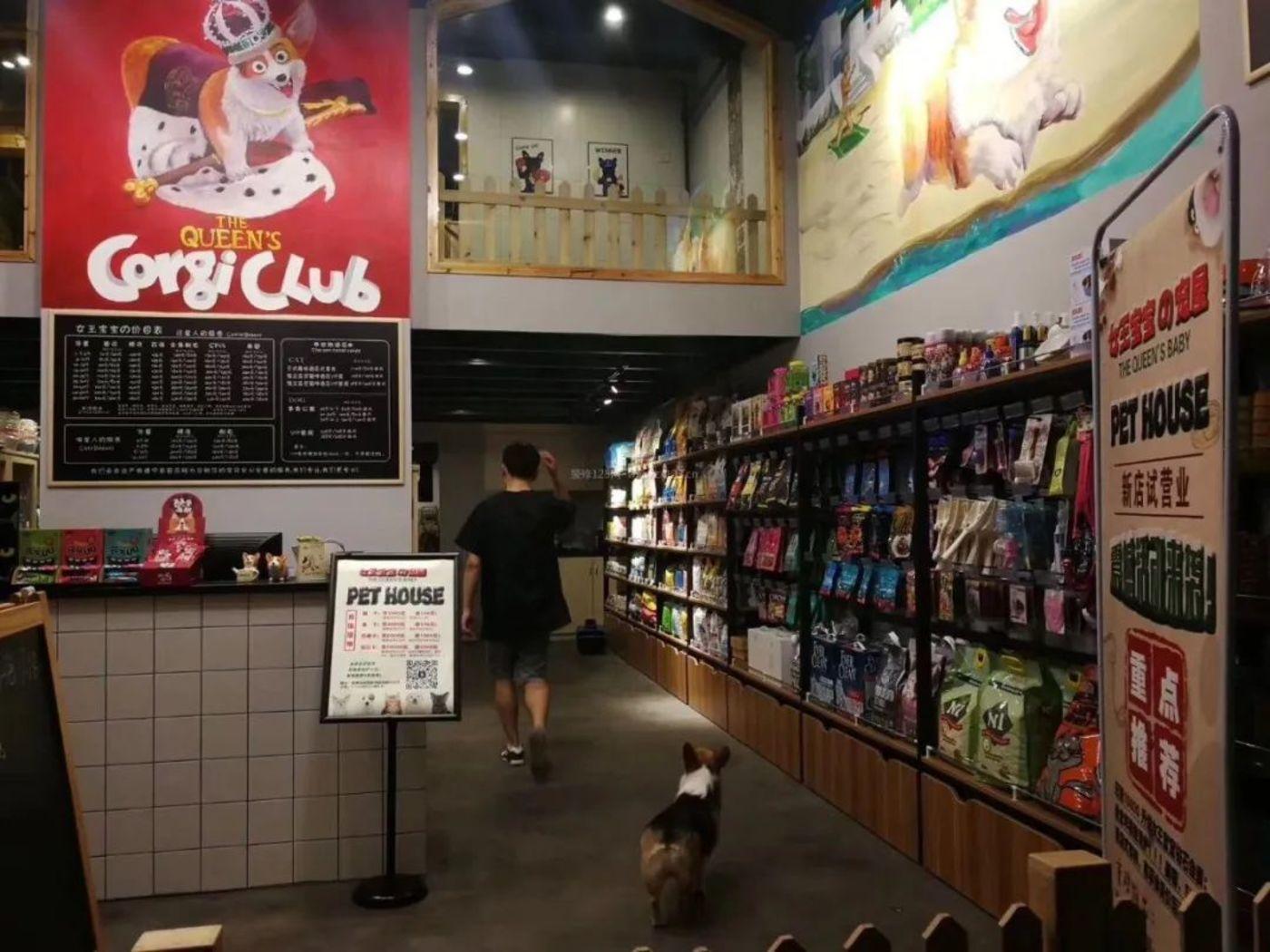 如今的宠物店装修风格也成为吸引顾客的关键因素之一