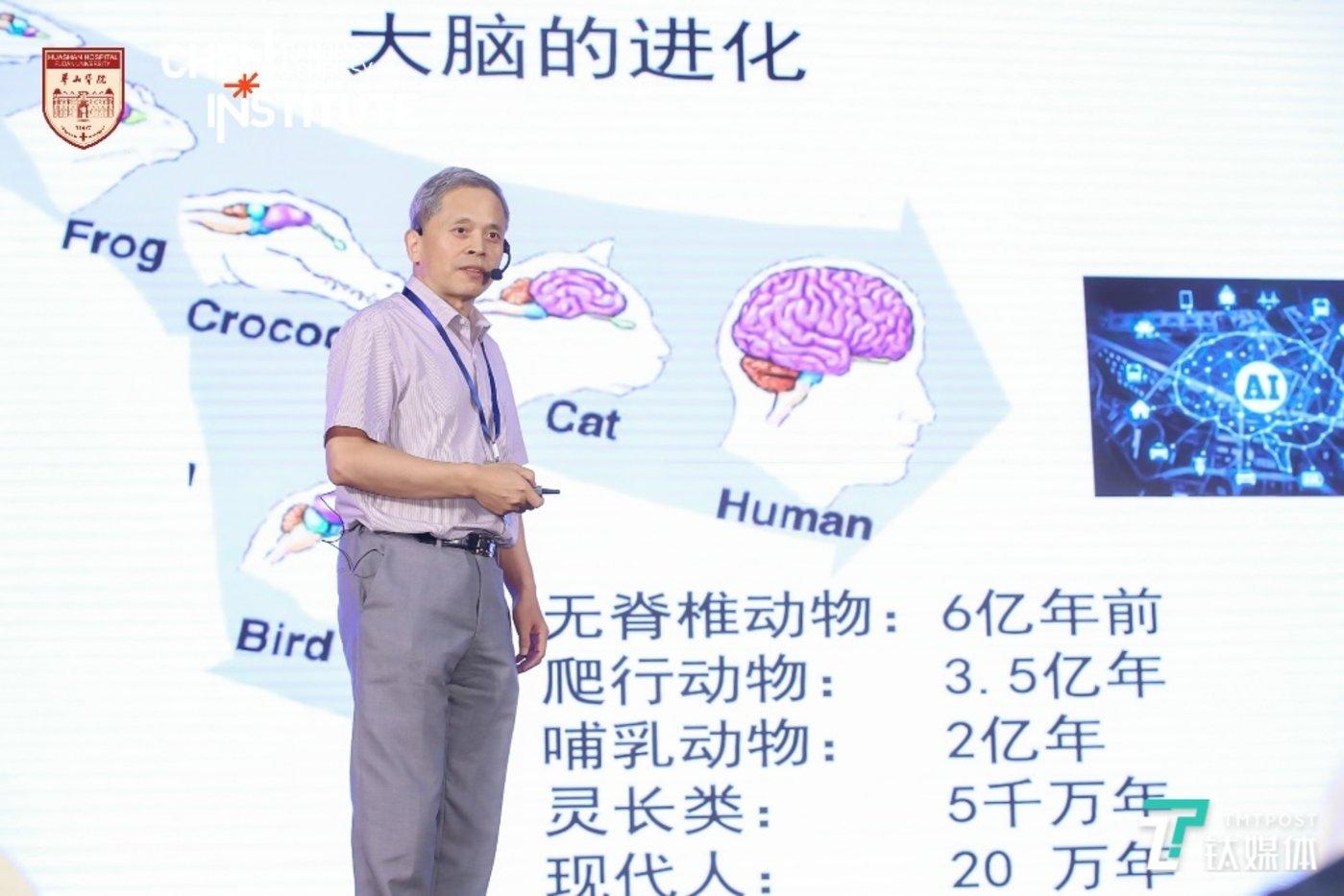 中国科学院院士、复旦大学脑科学转化研究院院长段树民院士