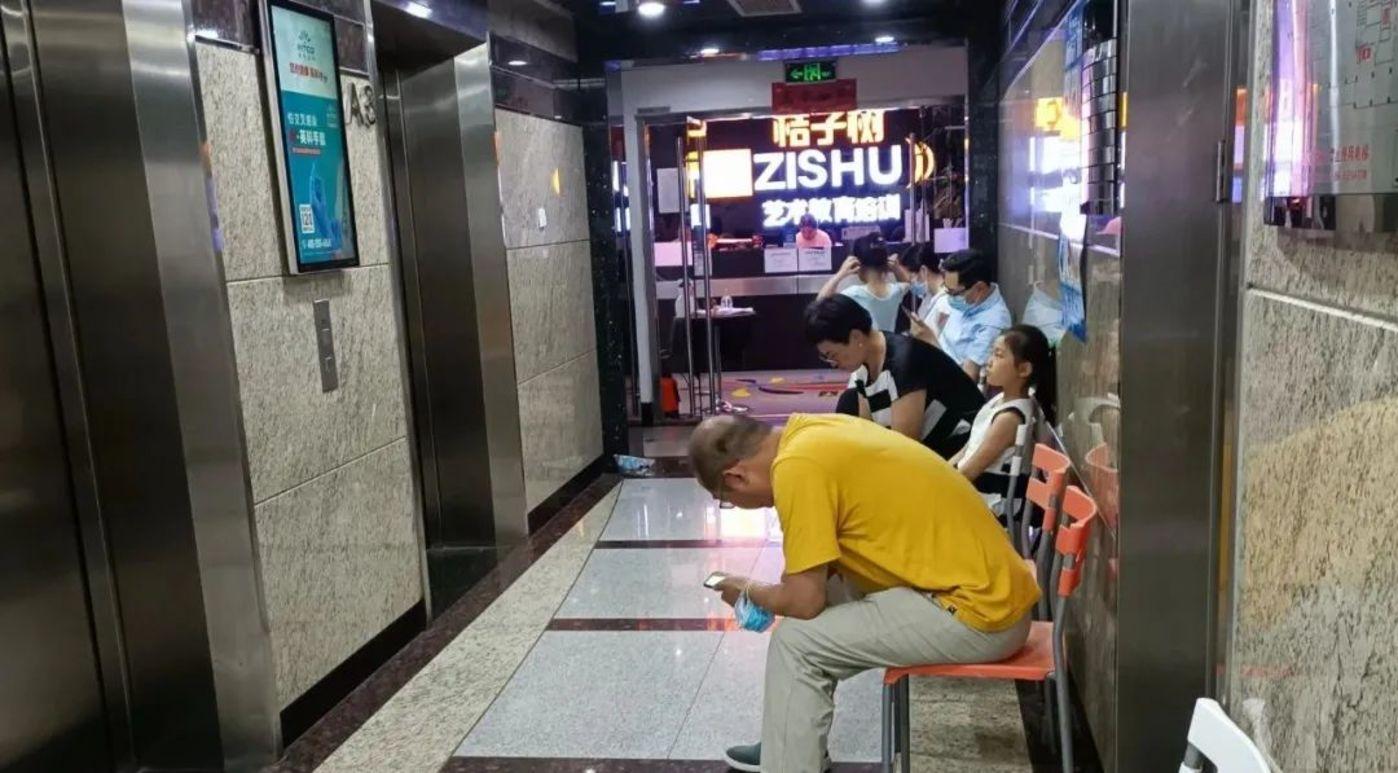 北京银网大厦桔子树