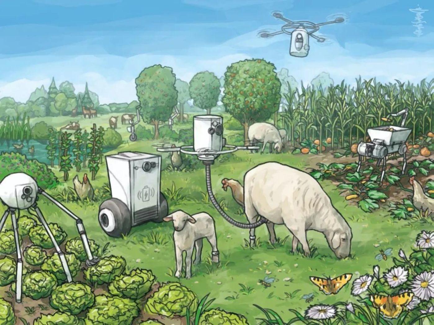 图 | 农业机器人带来的生态乌托邦(来源:论文)