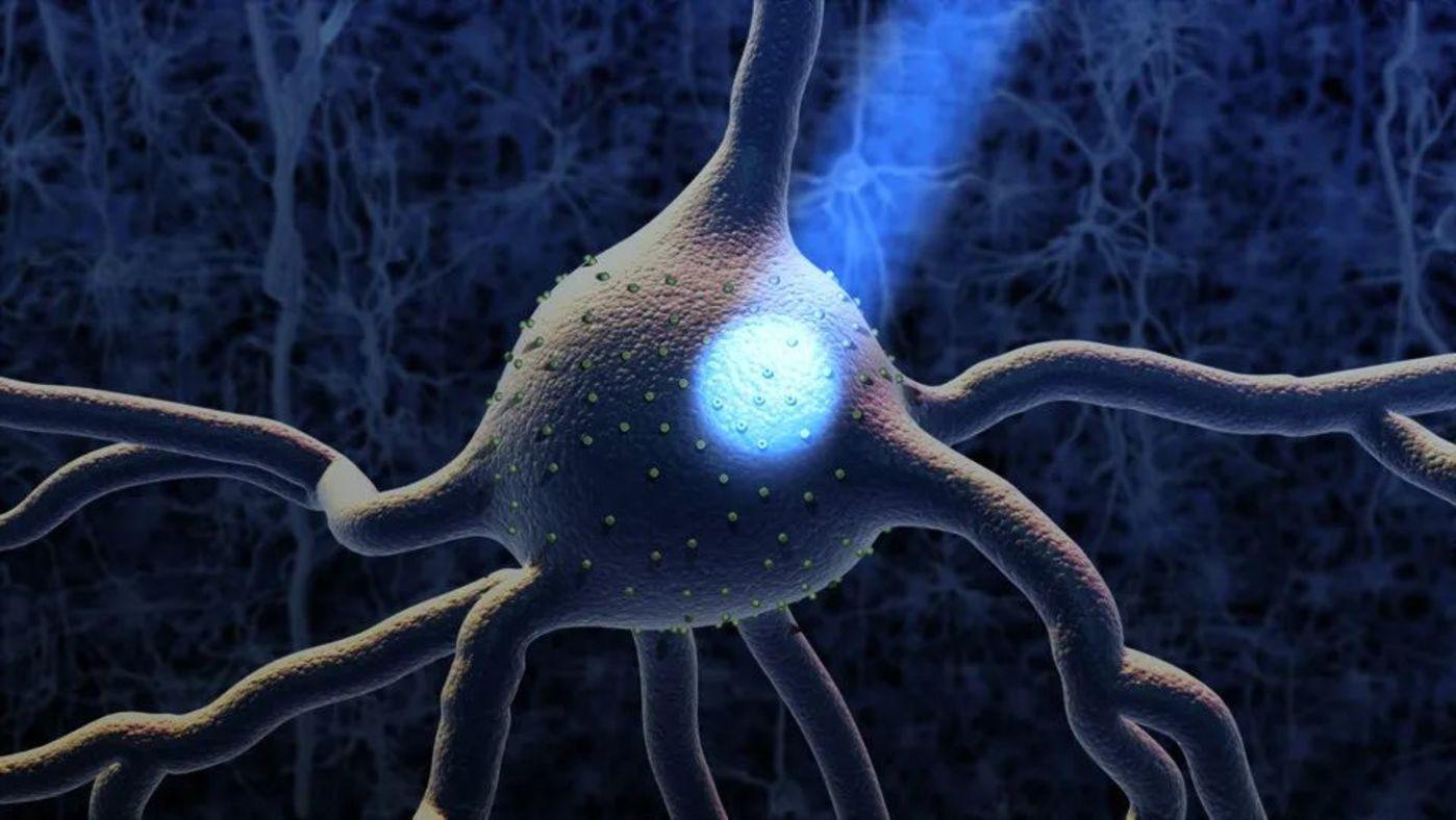 图   用光照改变神经元活动示意图(来源:AAAS)