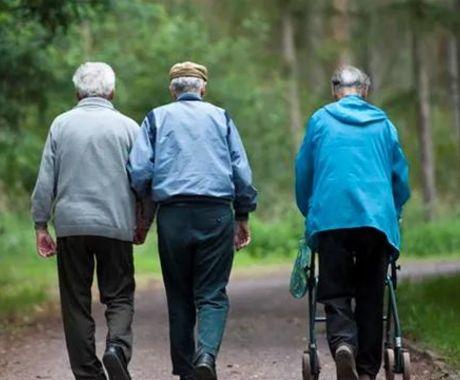 【书评】老龄化加深,三孩政策又来:人口如何影响我们的未来?