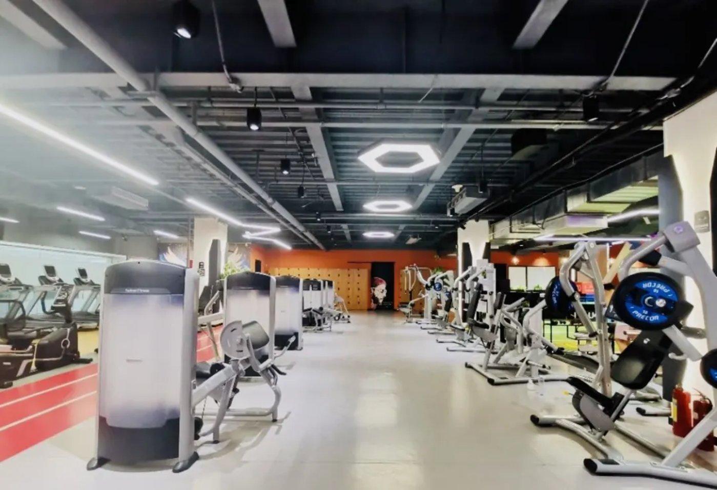 大白的健身房一角
