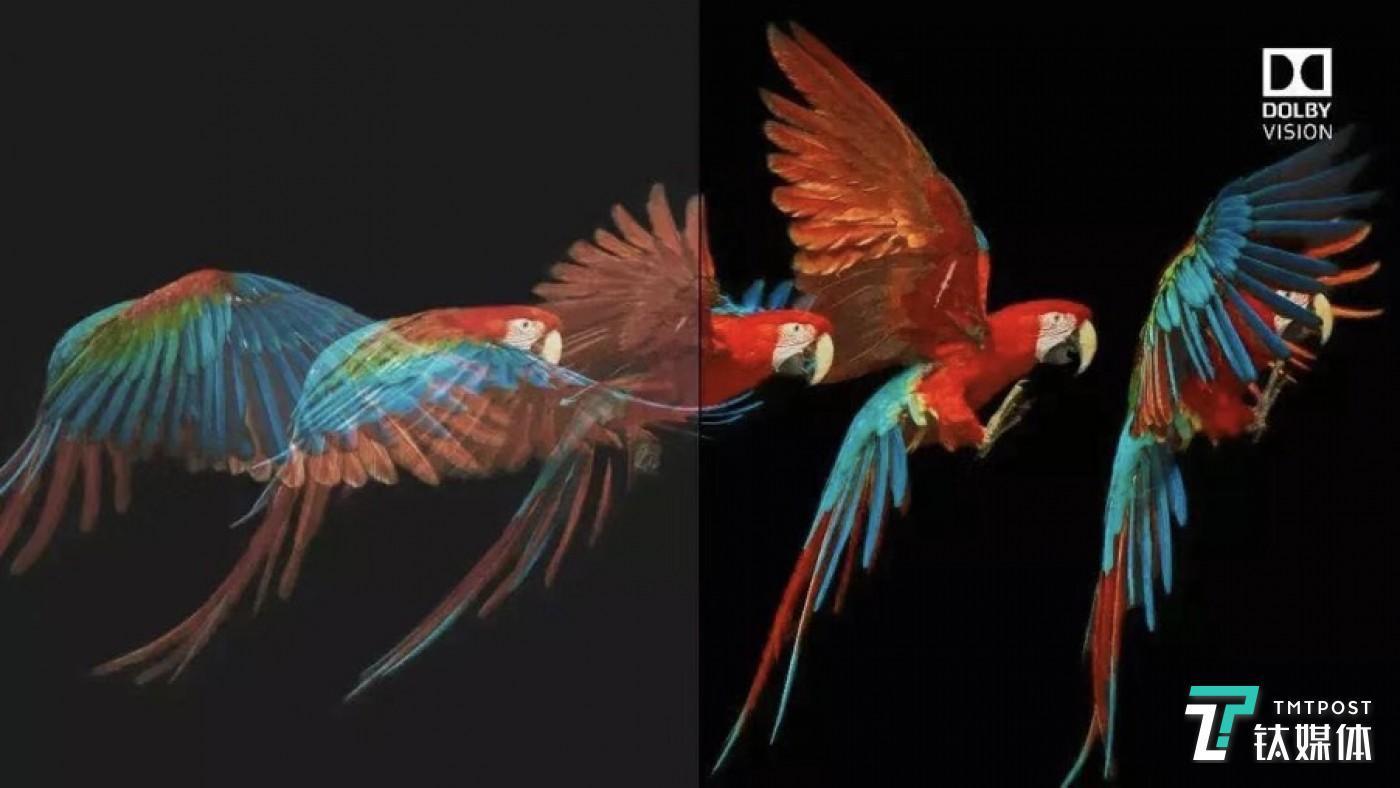 和标准动态范围相比,杜比视界HDR暗部细节更好,同时颜色也更丰富
