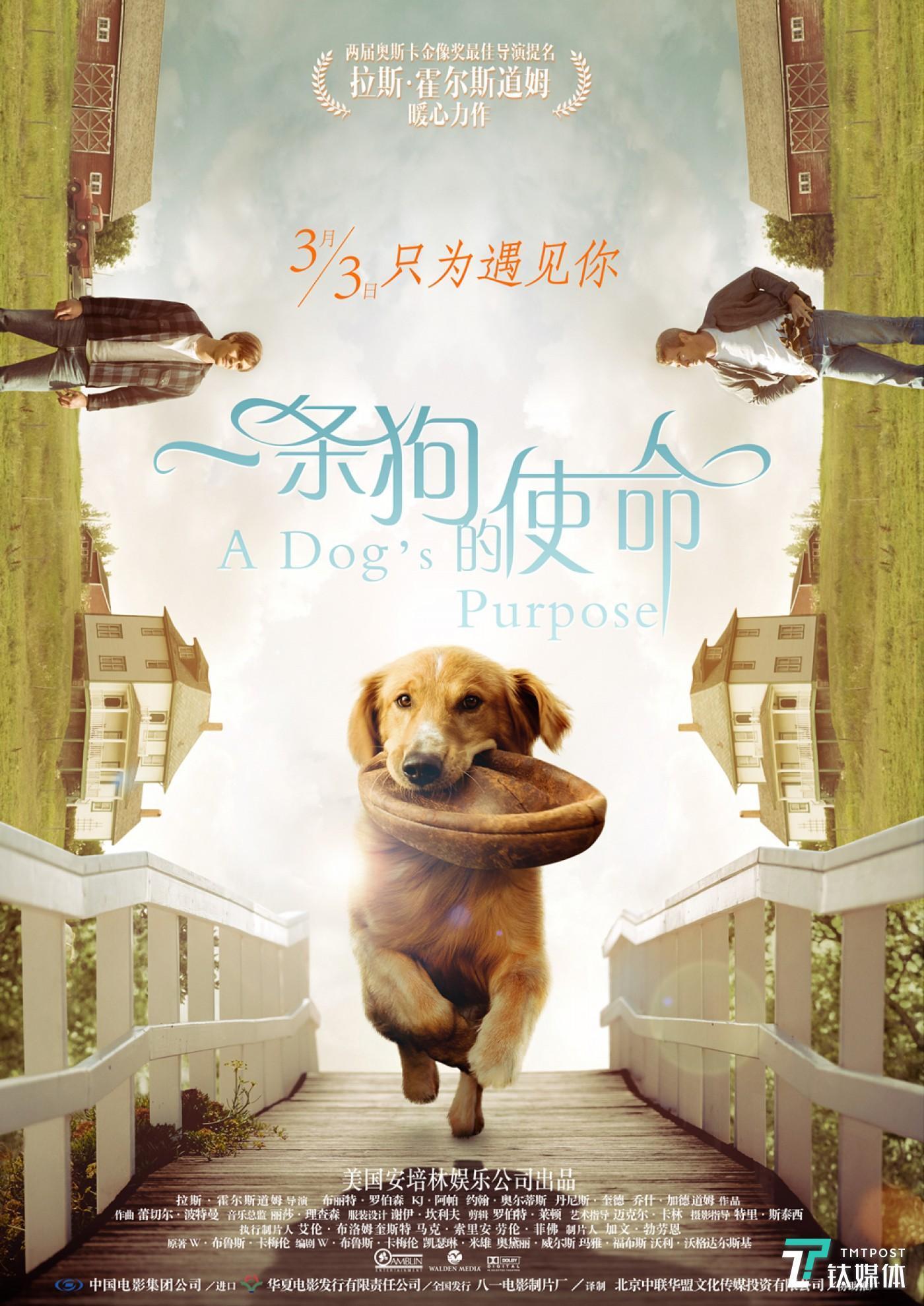 《一条狗的使命》导演获得过两届奥斯卡最佳导演奖提名