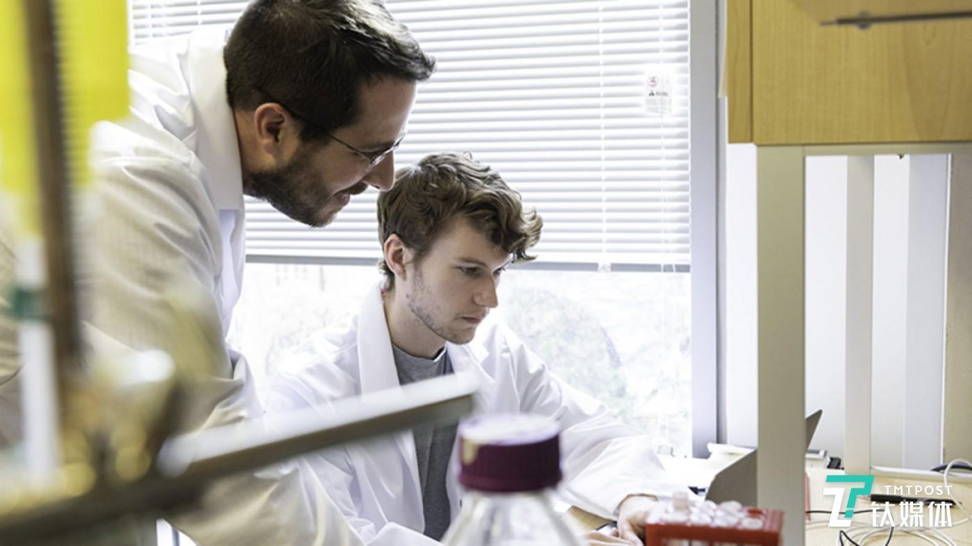 分子生物学副教授Jason S.McLellan(左)和研究生Daniel Wrapp(右)在实验室工作