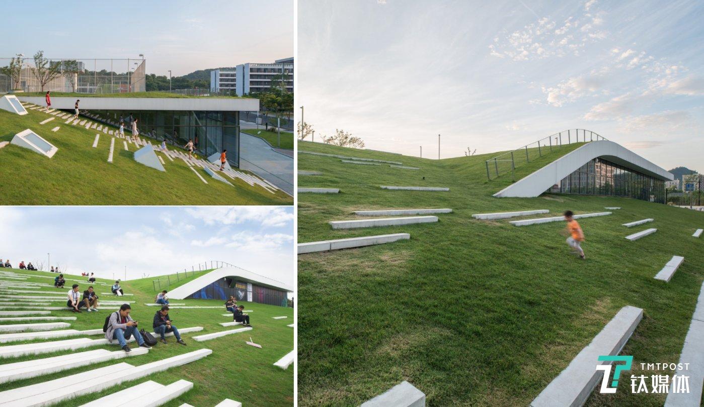"""""""整个建筑的屋顶看起来像是一个地面广场自然的延续。"""""""