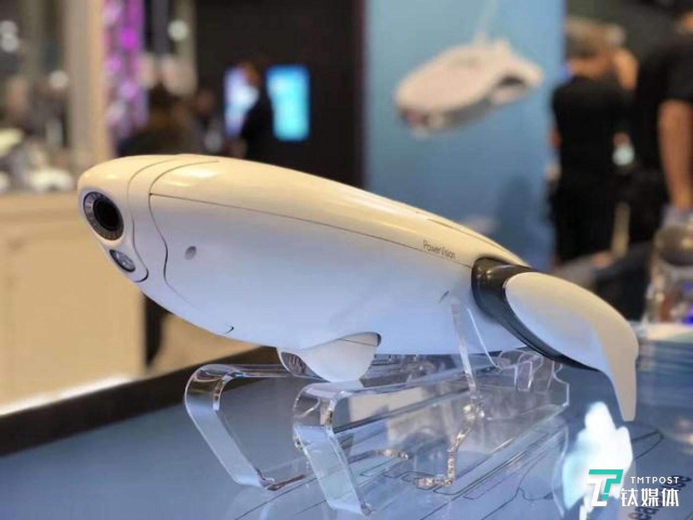 PowerDolphin小海豚