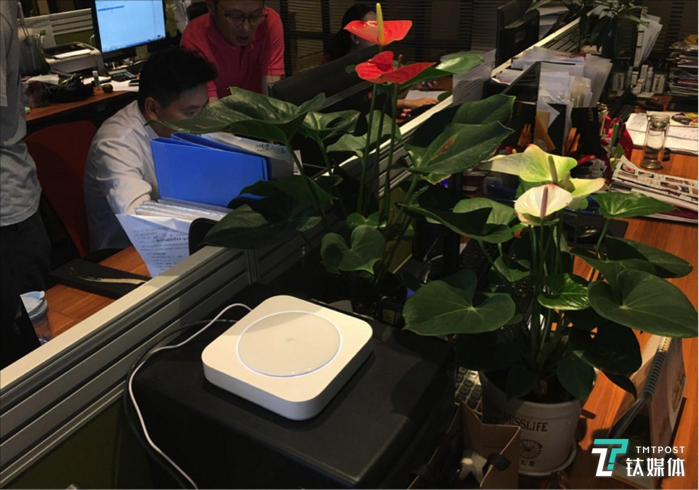 川味观使用钉钉C1进行企业网络管理