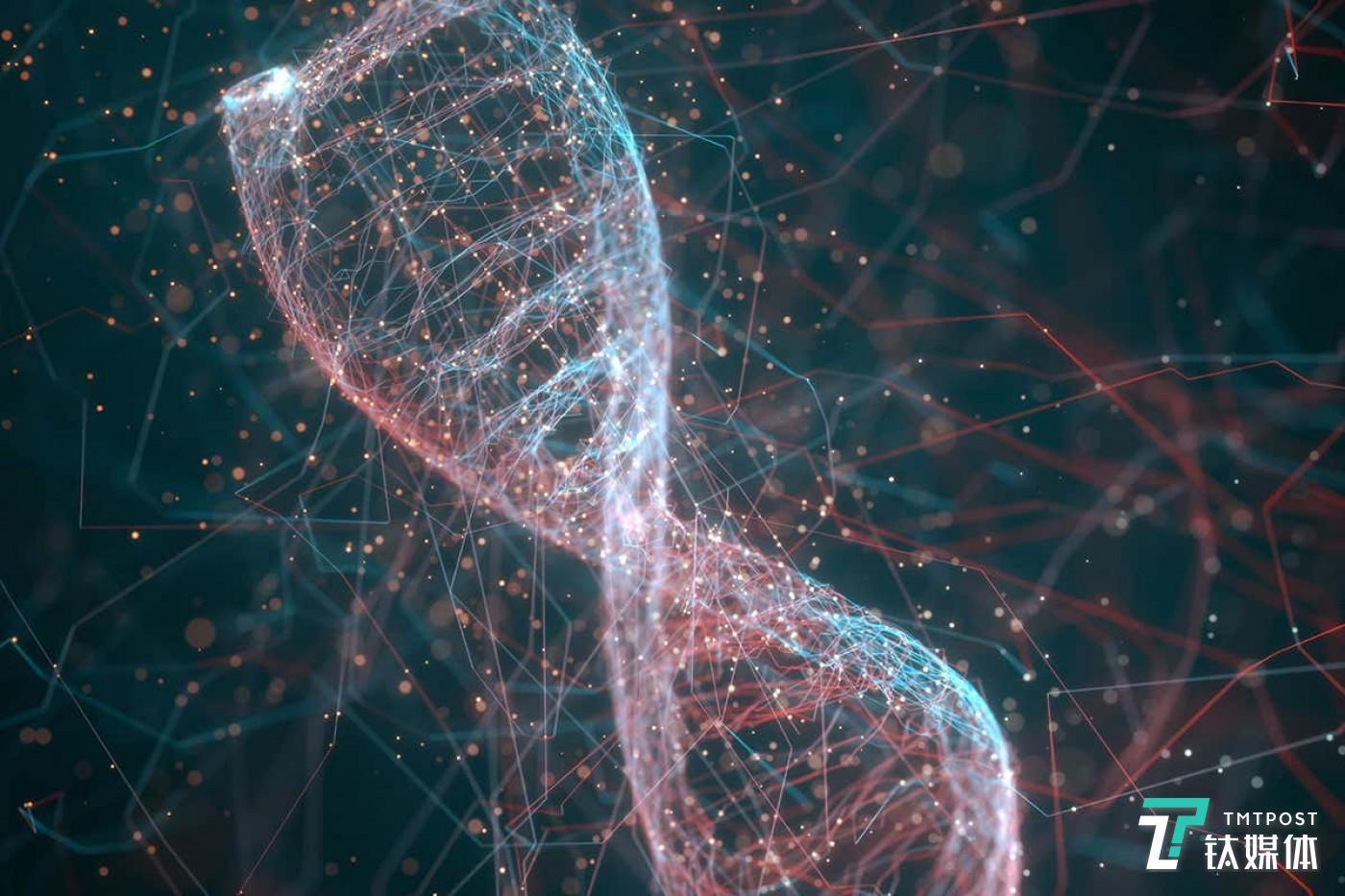病毒DNA渲染图(来源:科学图片库)