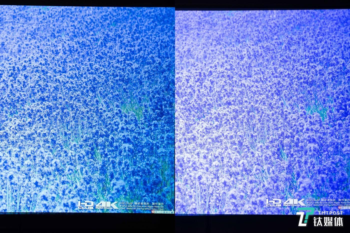 薰衣草图片对比,左为其他产品,右为LUNE 4K
